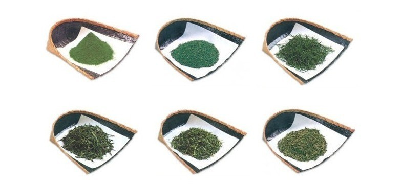 Chá verde e cafeína