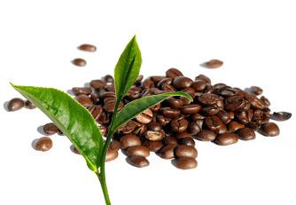 Teor de cafeína em mg: café, cola e chá