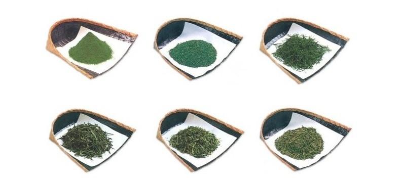 Cafeína e L-teanina no chá verde
