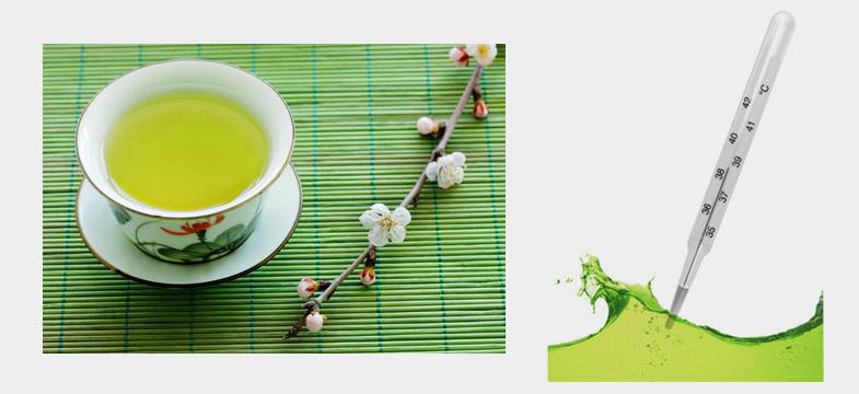 Temperatura da infusão do chá verde
