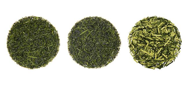 Chá verde: manhã, tarde, noite